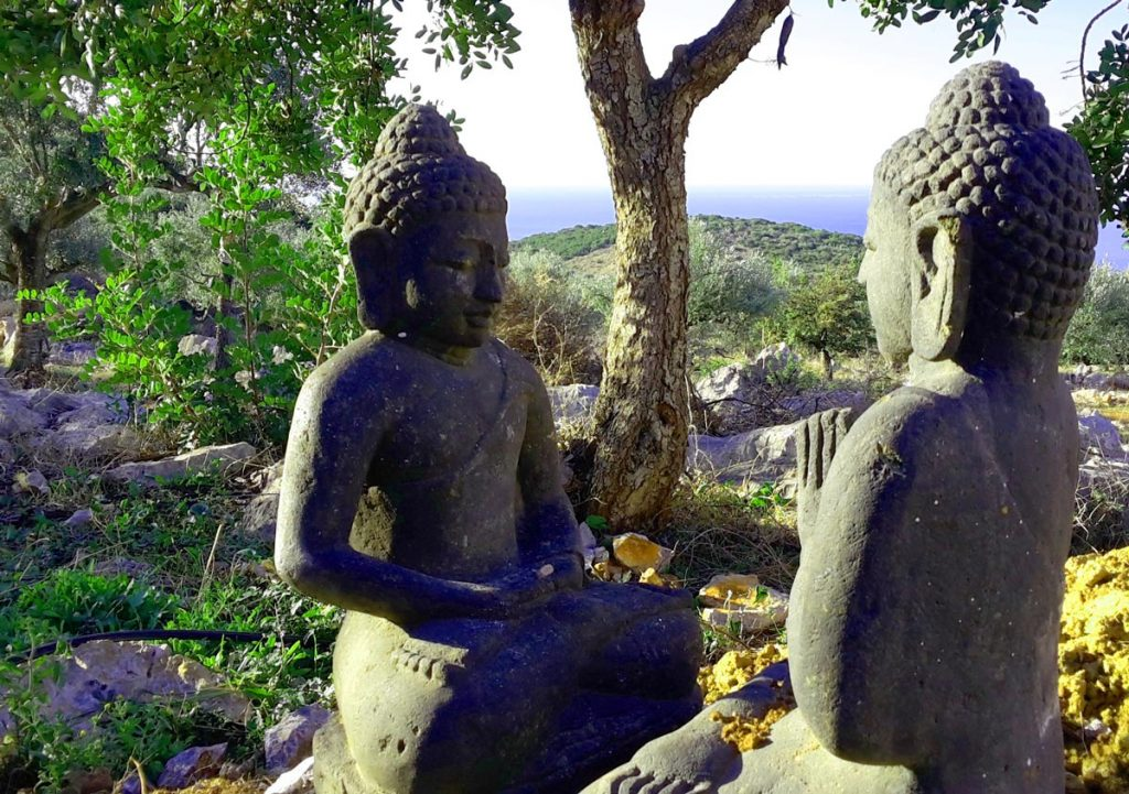 The Wisdom of theHeart-Sutra:     Emptiness with a Heart of Compassion
